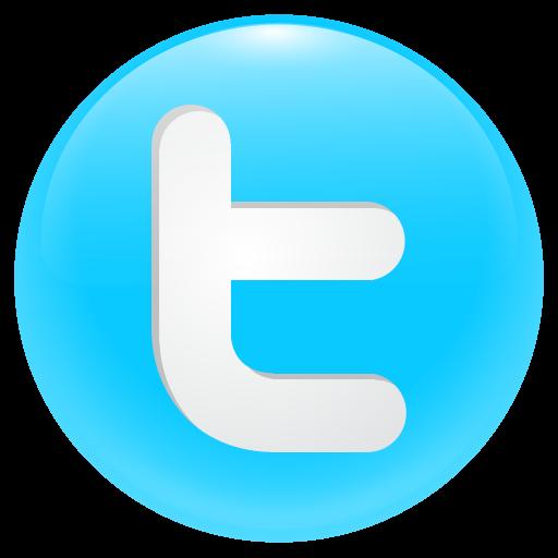 Round Twitter Icon Button