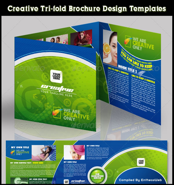 Creative Tri-Fold Brochure Design