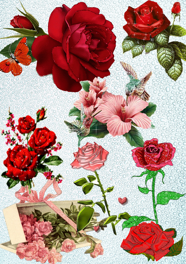 Flowers for Photoshop PSD