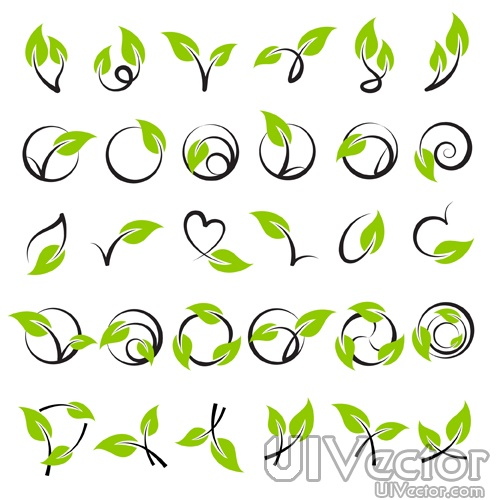 18 Leaf Vine Vector Images
