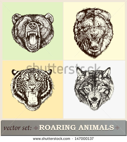 Vector Animal Illustration