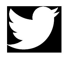 Twitter Icon White