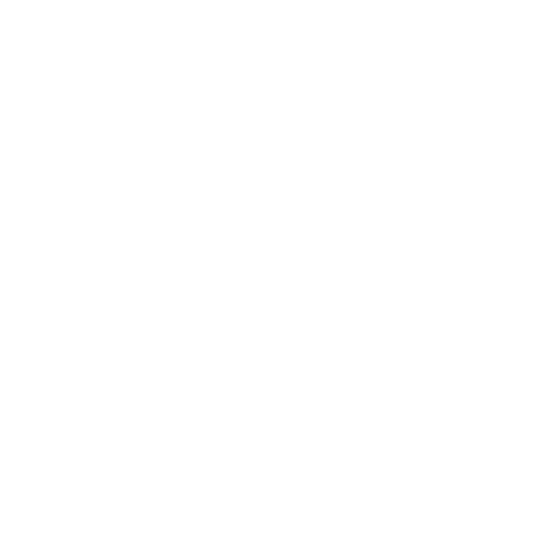 Twitter Logo White