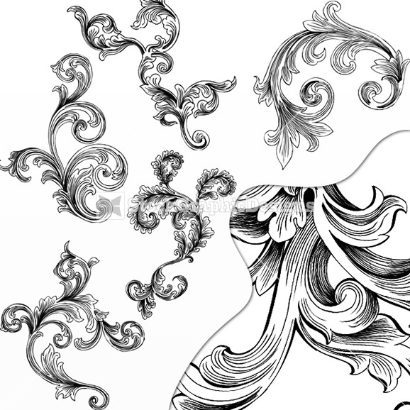 Vector Floral Ornamental Design