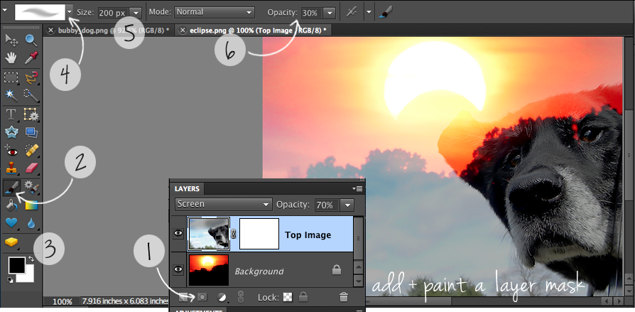 8 Photoshop Elements Layer Mask Images