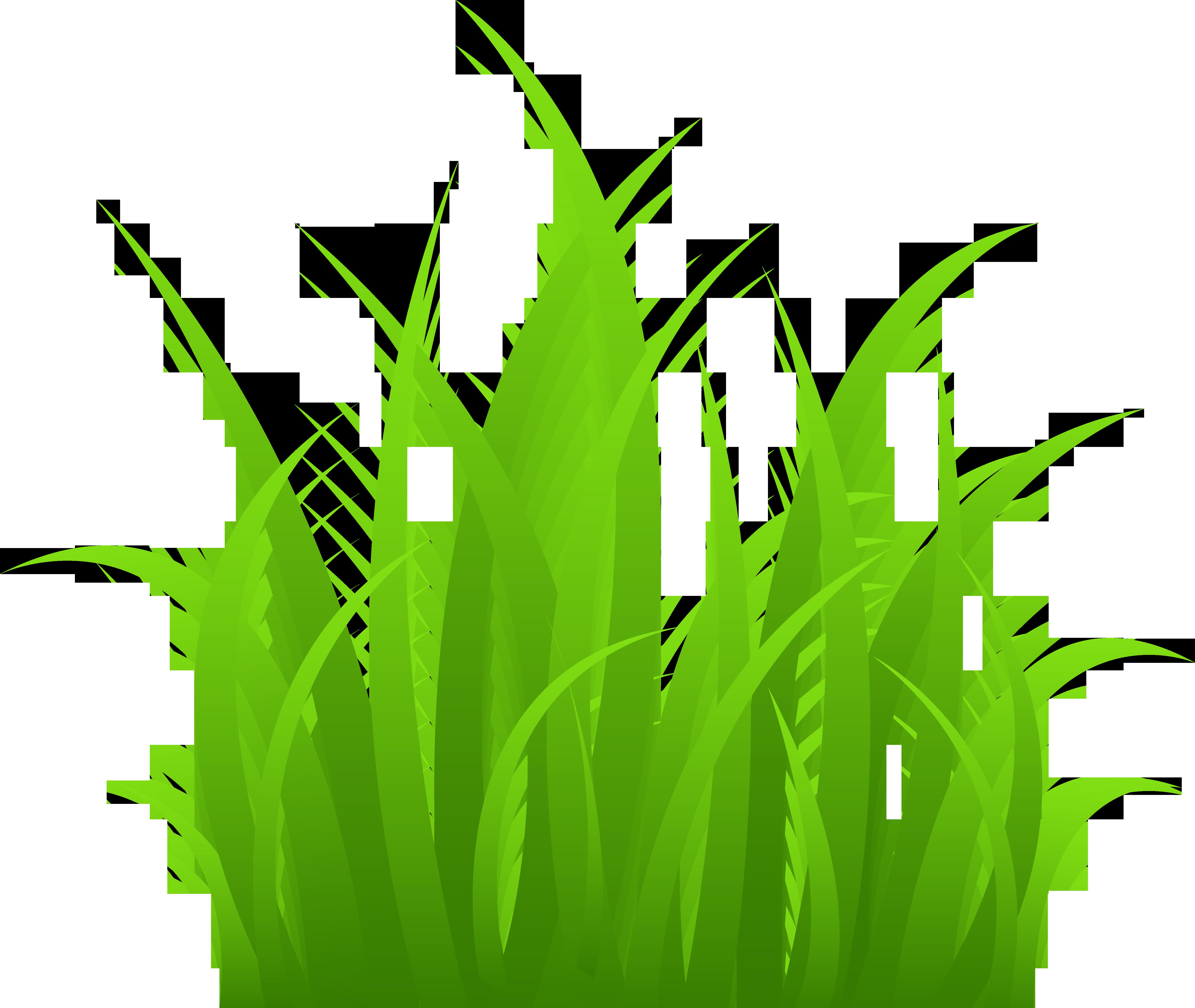 Cartoon Grass Clip Art