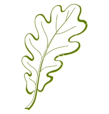 7 Oak Leaf Vector Images