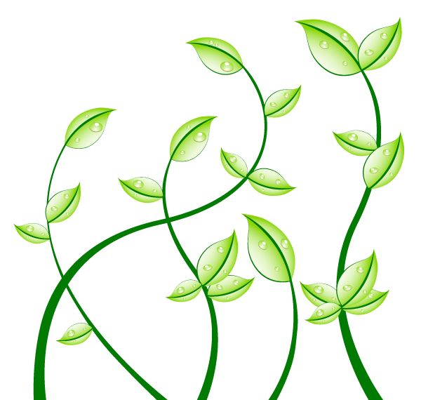 15 Leaf Vector Art Images