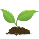 Small Plant Icon