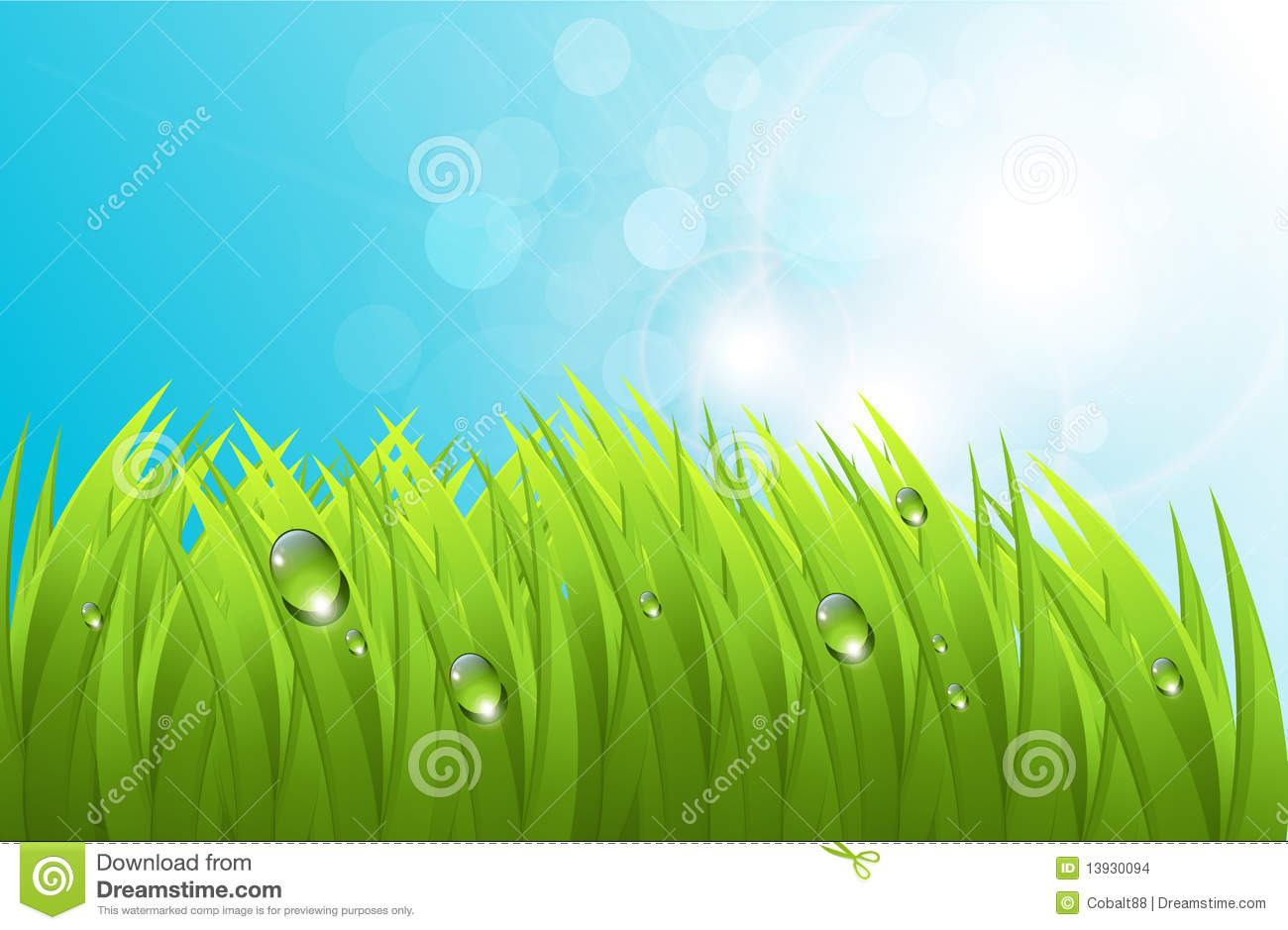 Vector Grass with No Background