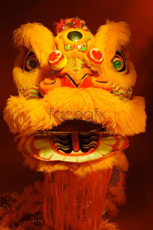 Chinese Lion Head Costume