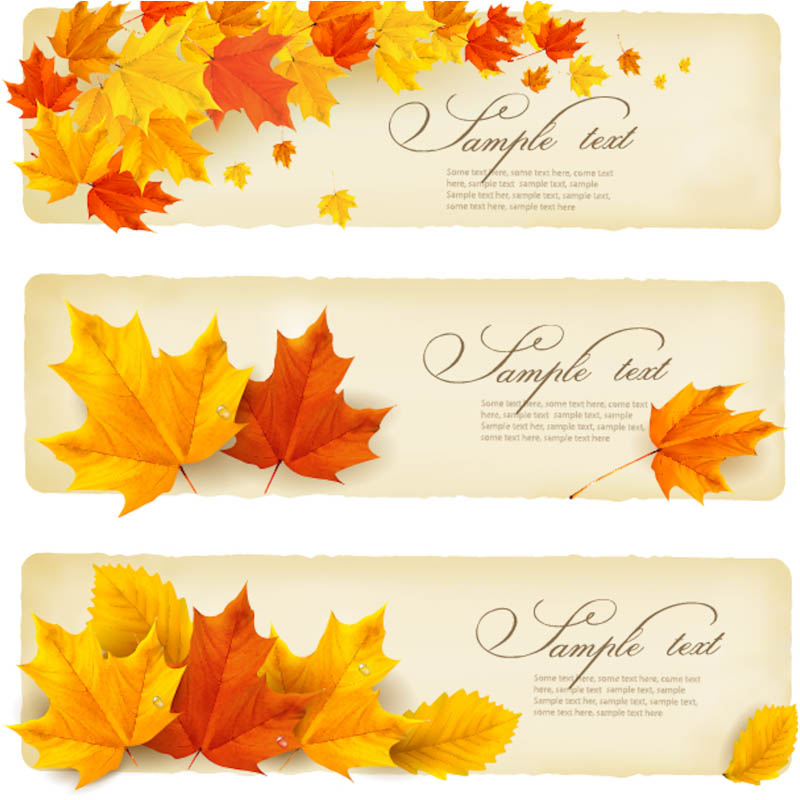 19 Fall Vector Graphics Images