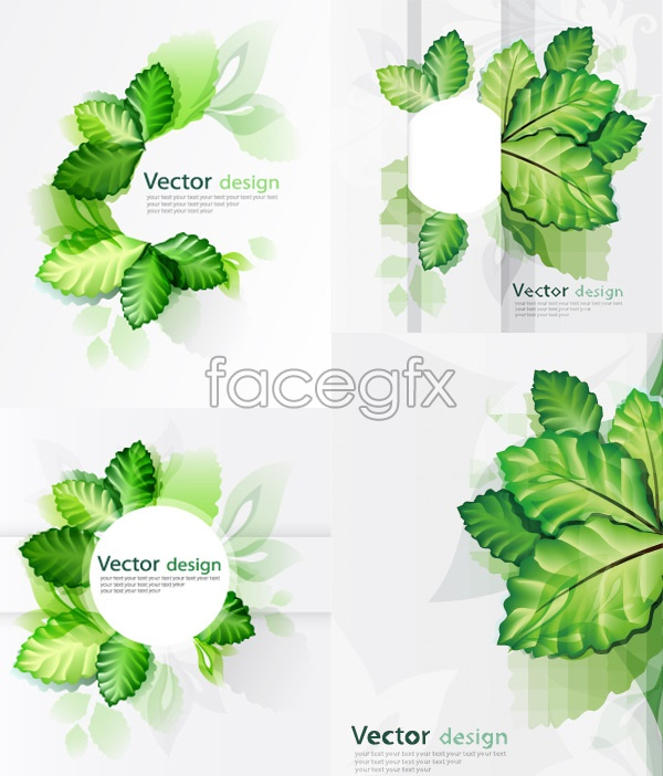 14 Eco Leaves Vector PSD Images