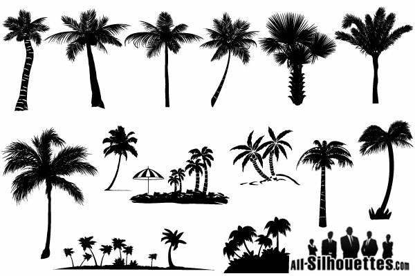 17 Sun Palm Tree Silhouette Vector Free Images