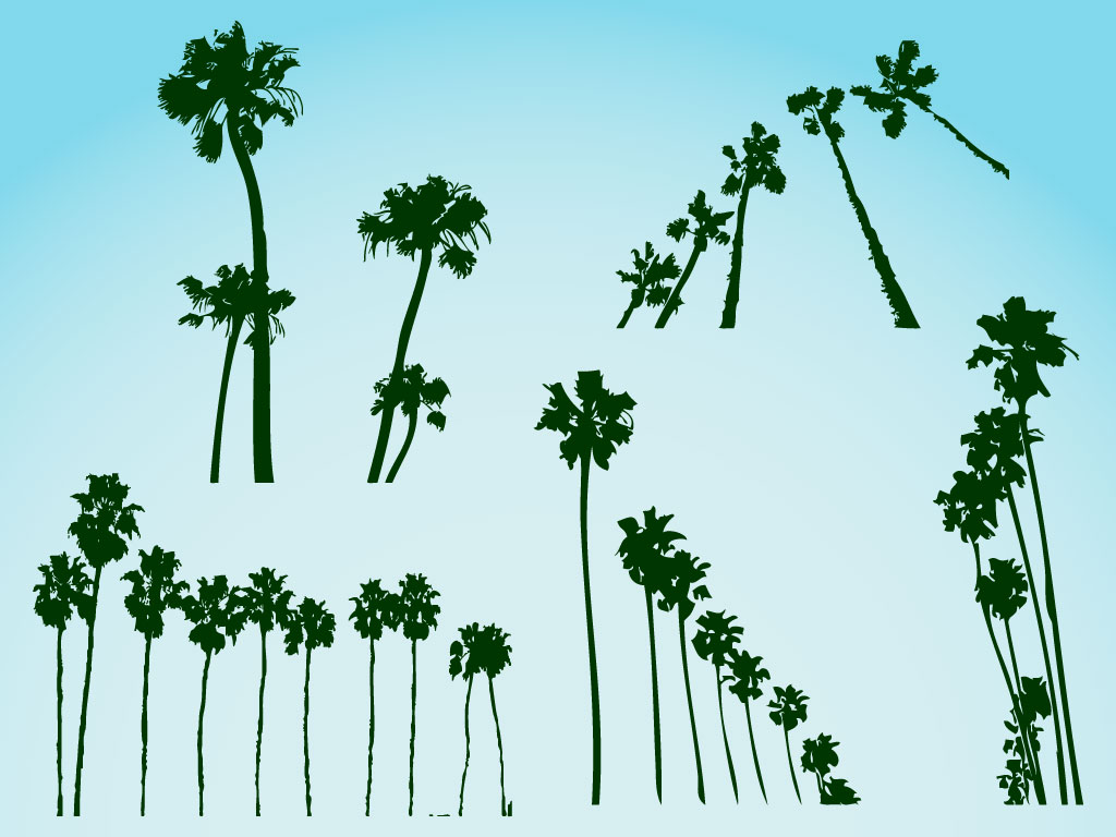 12 Desert Palm Trees Vector Graphics Images
