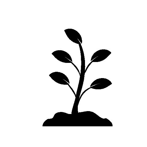 Plant Growing Icon Free