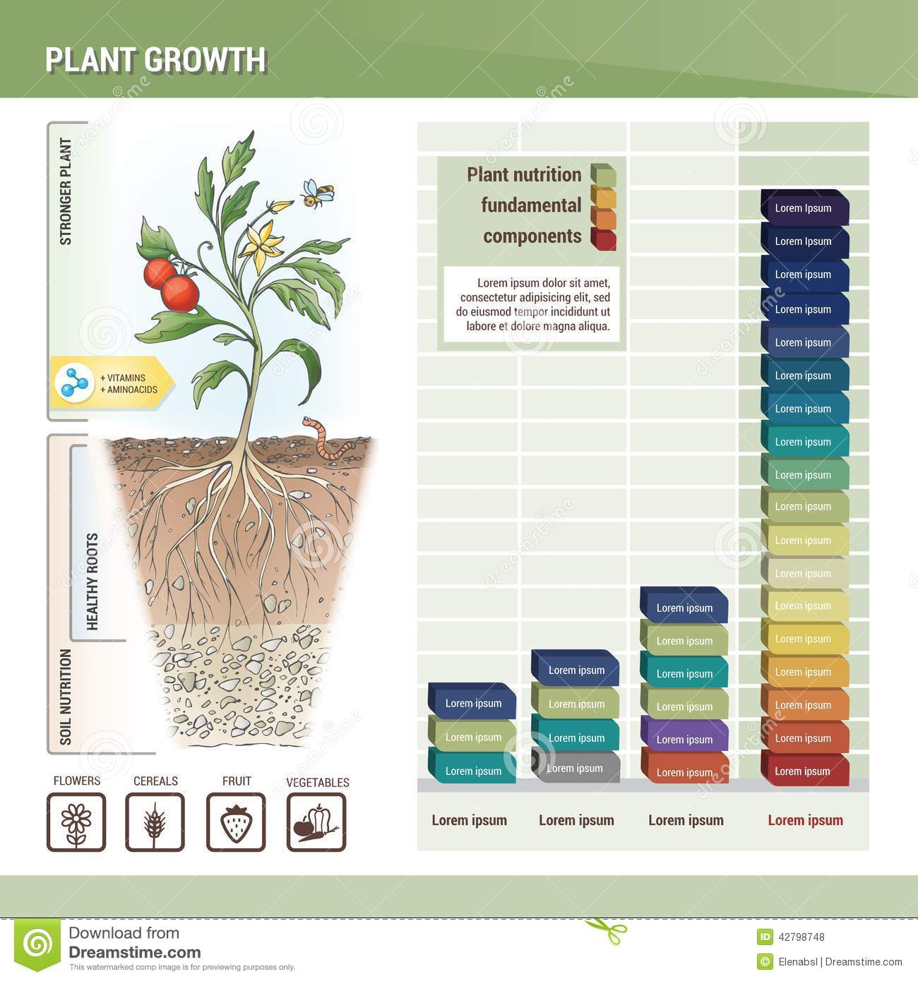 Plant Growth Graph
