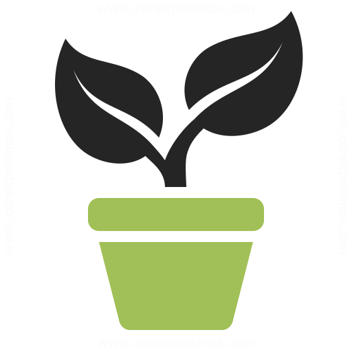 13 Plant Growth Icon Images - Black Leaf, Growing Plant ...