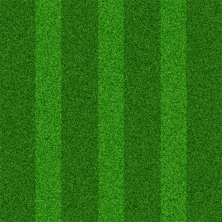 13 PSD Grass Texture Images