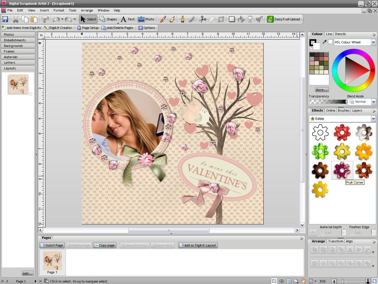 Digital Graphic Design Software