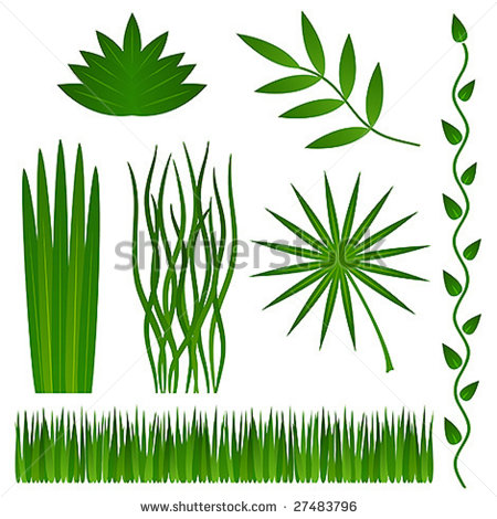 Grass and Leaves Vector
