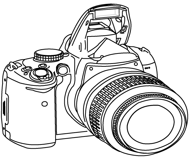 15 Nikon Camera Shutter Vector Images
