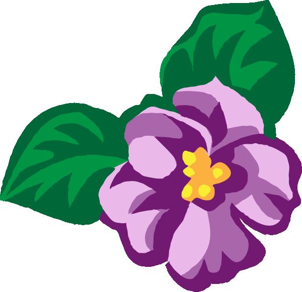 8 Violets R Vector Images