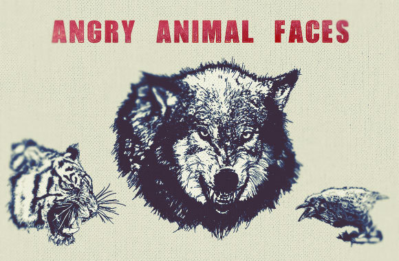 Angry Animal Faces