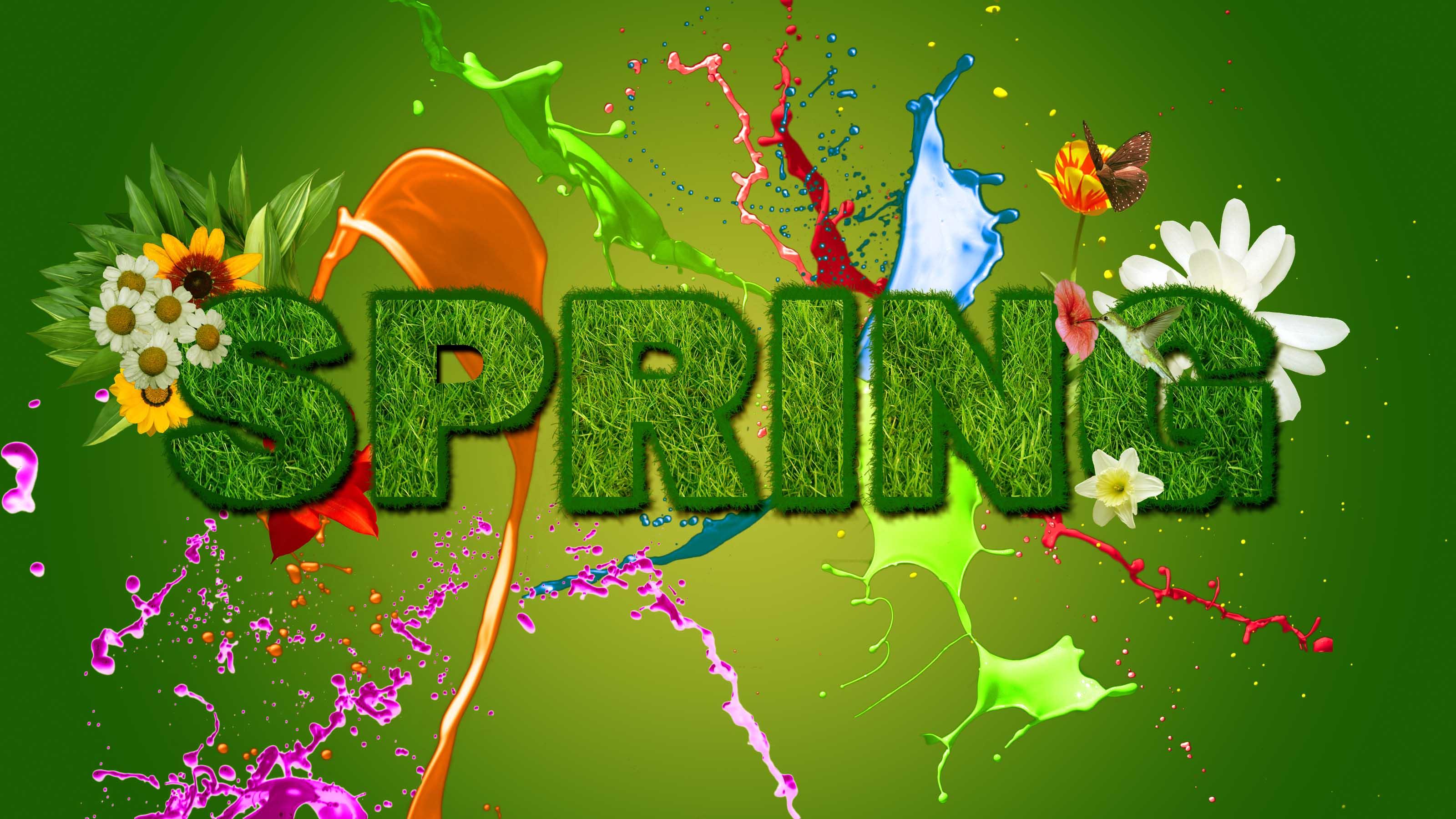 Bing Free Wallpaper Spring Flowers