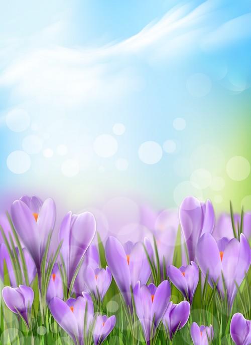 Flower Free Spring Wallpaper