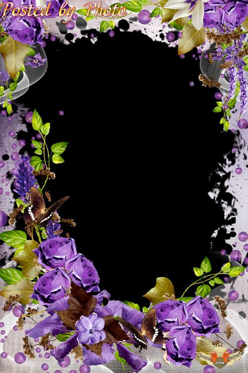 Free Photoshop Photo Frame Flowers