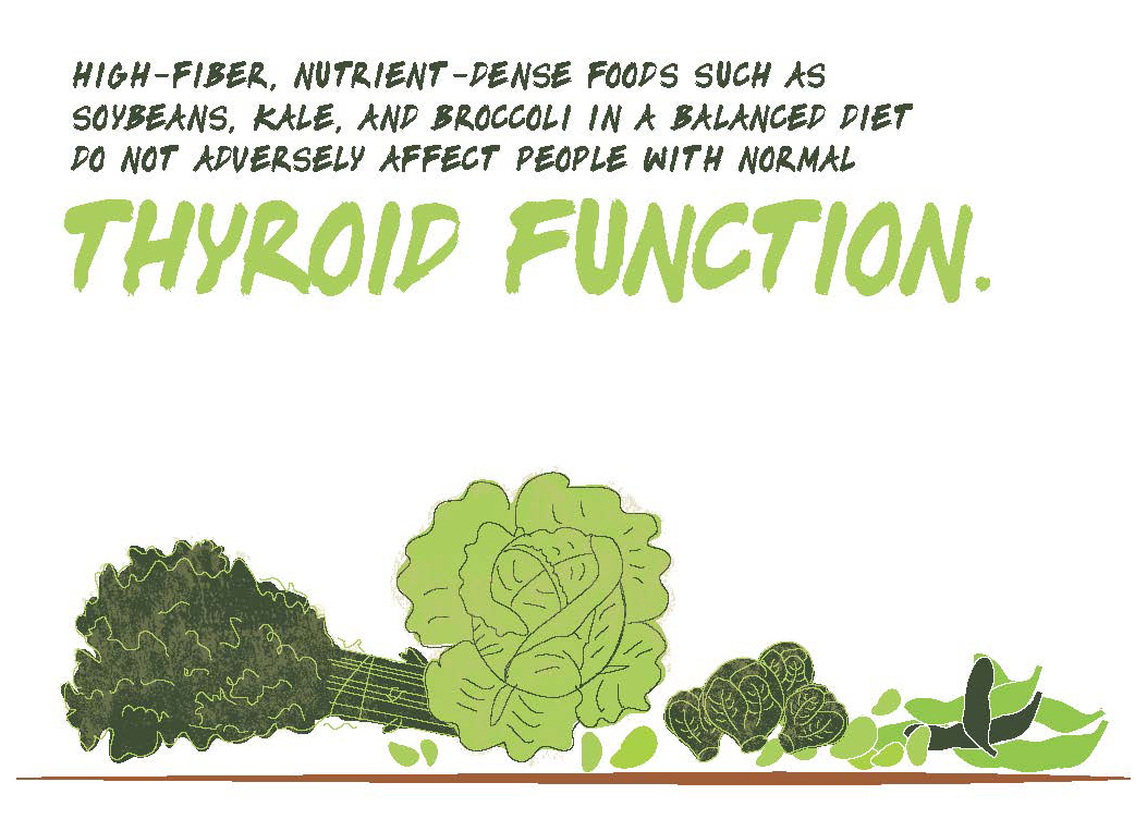 High-Fiber Diet Infographic