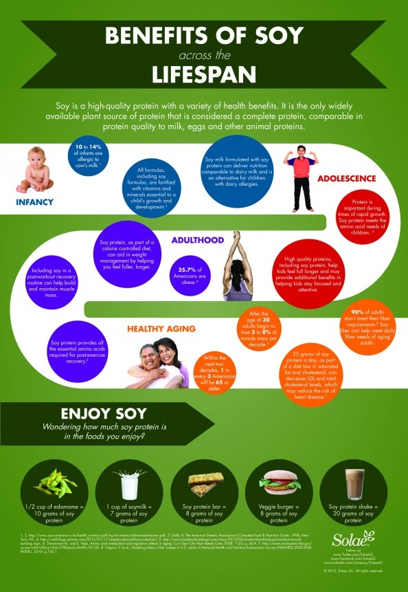 Plant Protein Infographic