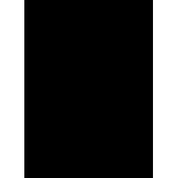 Voice Telephone Icon
