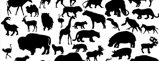 African Animal Silhouettes Vector Images Free