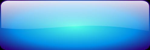 Blank Blue Rectangle Button