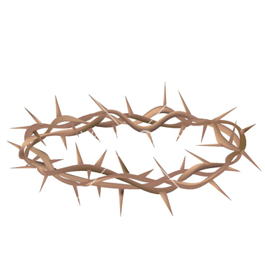 13 Crown Of Thorns Vector Images