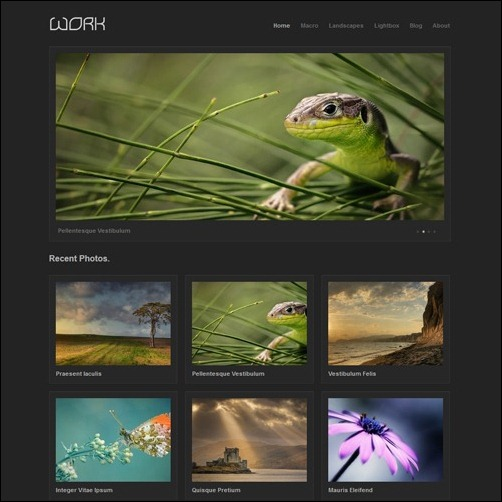 12 Photography Website Templates HTML Images