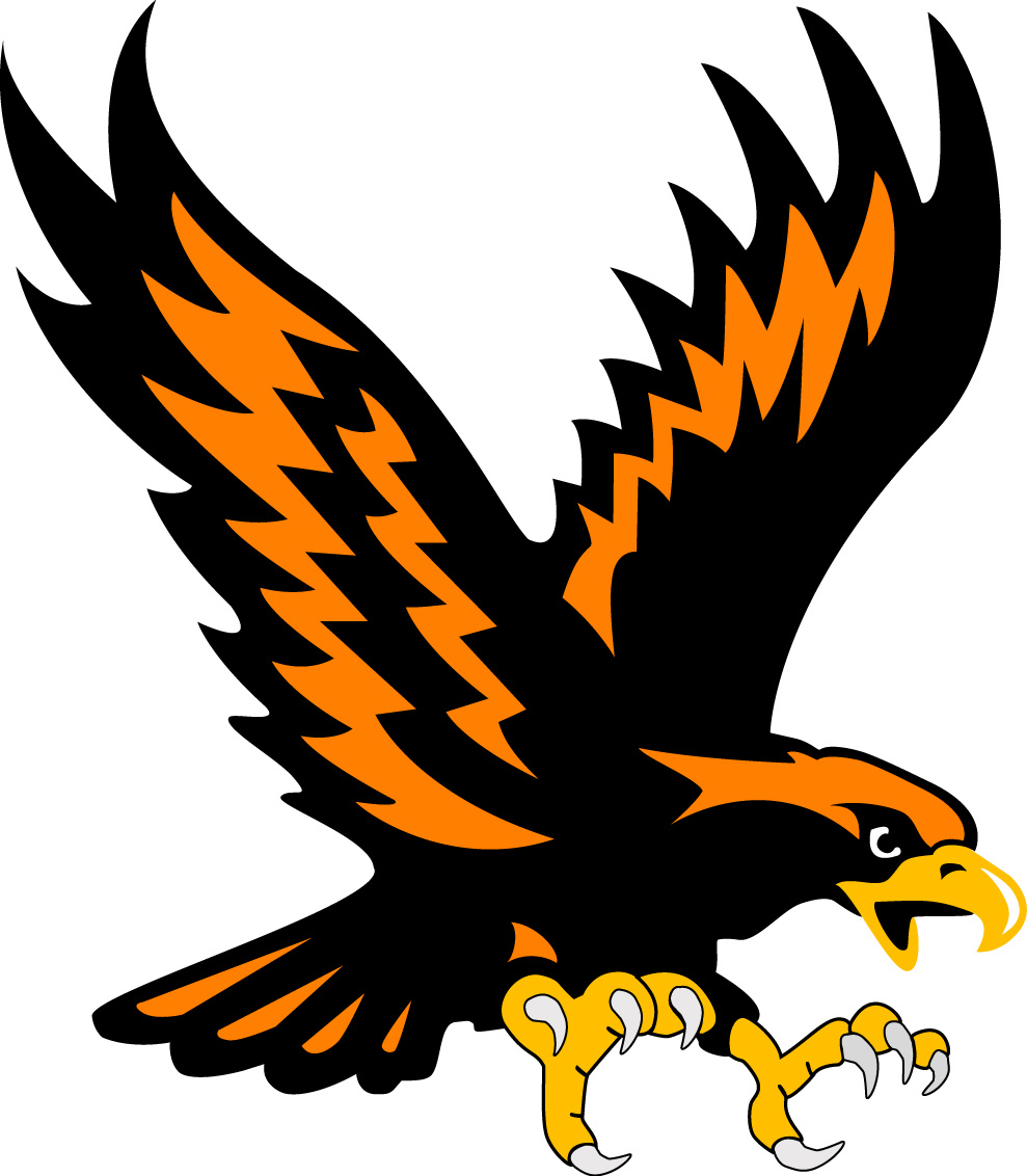 Somerset Eagles Logo