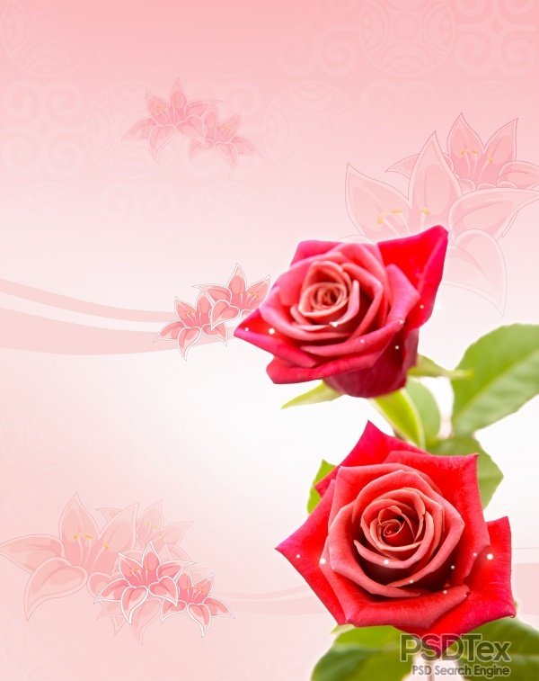 6 Beautiful Red Roses PSD Images