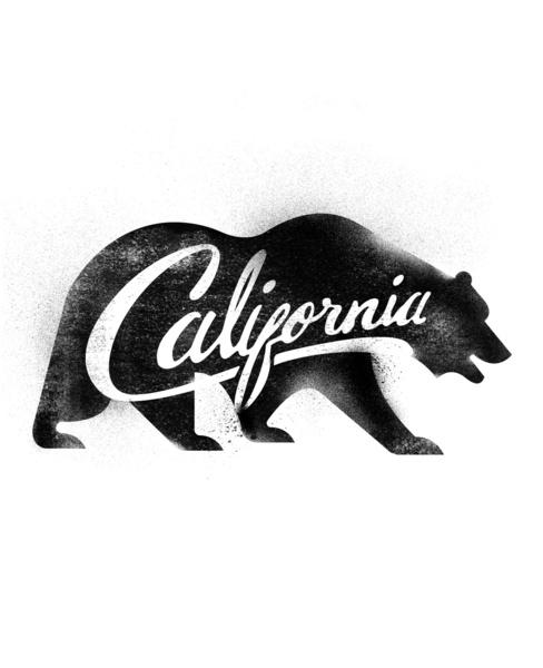 11 California Bear Vector Images