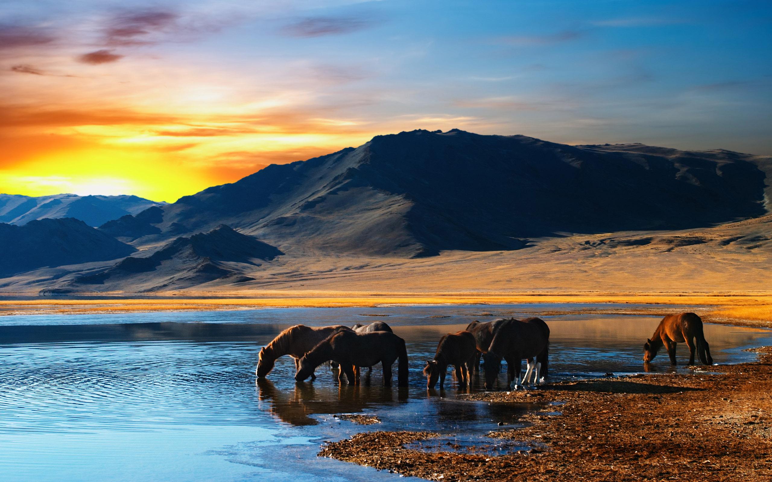 Free Beautiful Landscape
