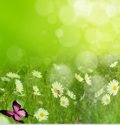 Free Website Background Spring