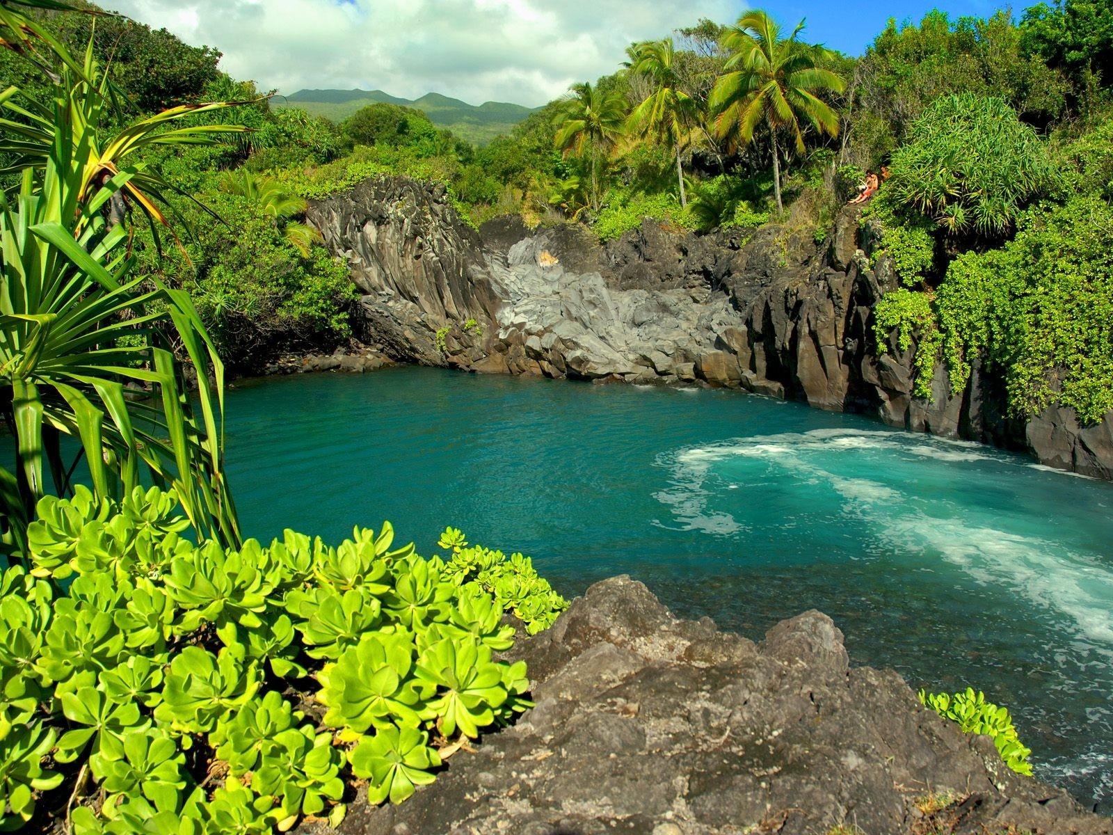 Maui Island Hawaii Hotels