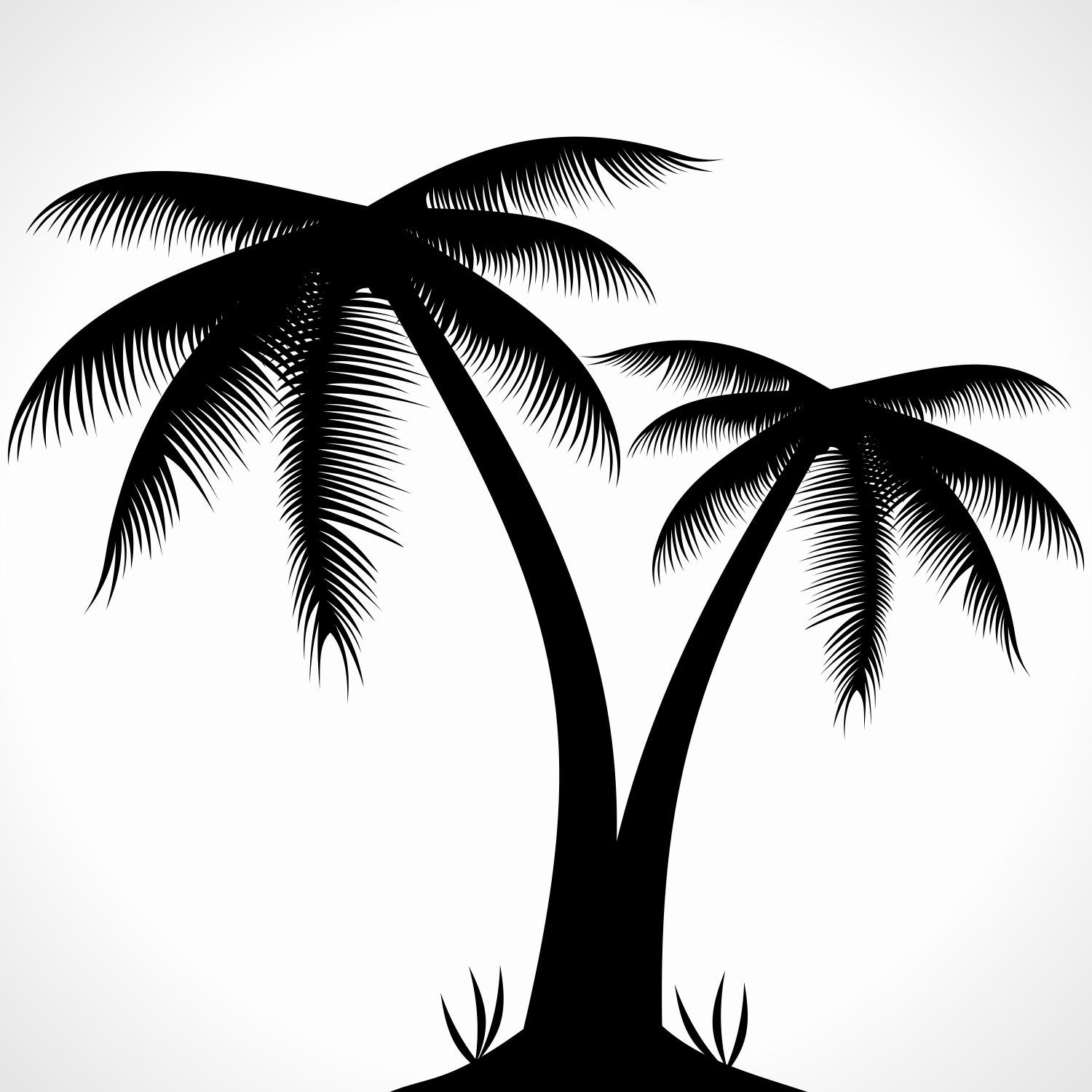 9 Palm Tree Silhouette Vector Images