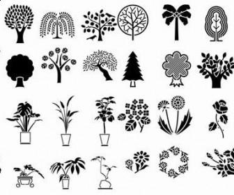 Plant Vector Art