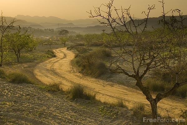 Southern Spain Landscape