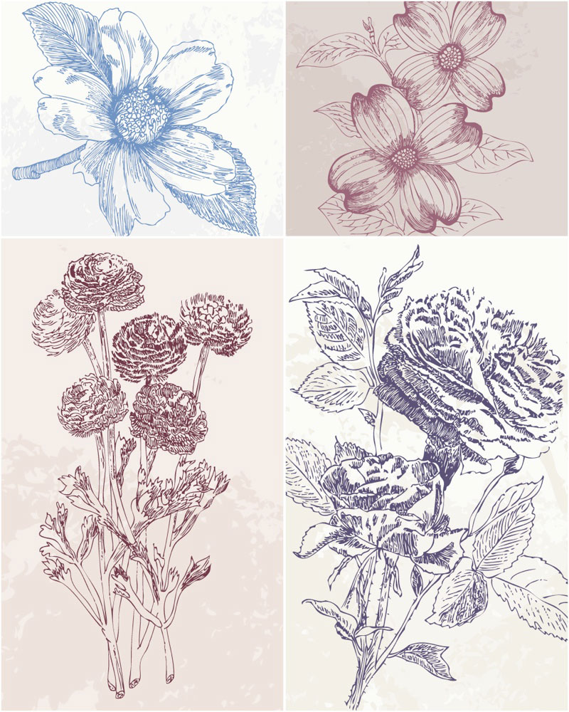 13 Hand Drawn Flower Vector Images