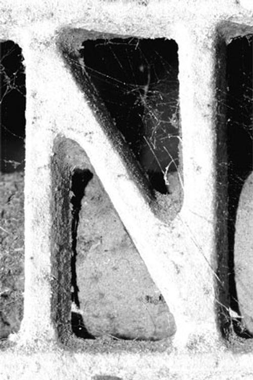 Alphabet Photography Letter Art N