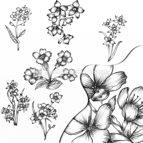 Beautiful Hand Drawn Flower Designs